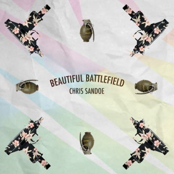 CHRIS SANDOE - BEAUTIFUL BATTLEFIELD