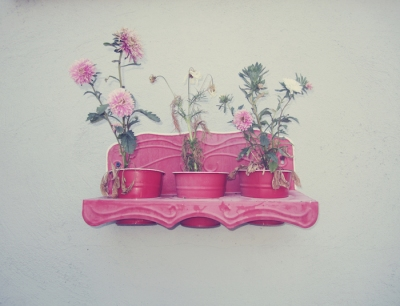 Michael Shirley - Frat Garden